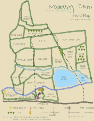 field map small